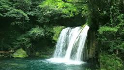 Shokeidaru at Kawazunanadaru Footage
