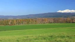 秋の草原と大雪山 Stock Video Footage