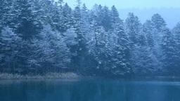 雪降るオンネトー湖畔 Stock Video Footage