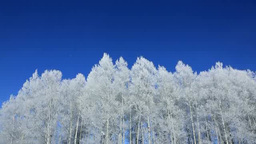Blue sky and rime ice Footage