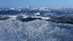 摩周湖の霧氷と雄阿寒岳 Stock Video Footage