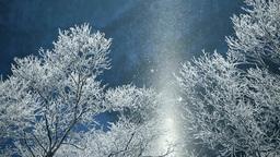 霧氷の摩周湖のサンピラーとダイヤモンドダスト... Stock Video Footage