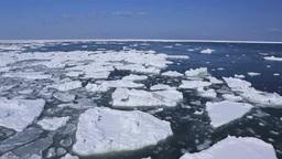 Drift Ice Of Nosappumisaki stock footage