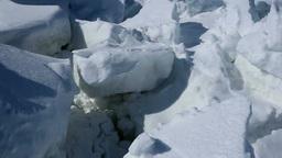 知床西海岸の流氷原 Stock Video Footage