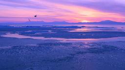 朝焼けの知床半島と流氷 Footage