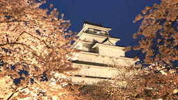 鶴ヶ城と夜桜 Stock Video Footage