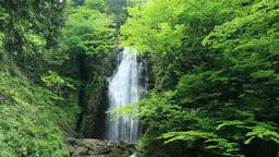 Waterfall retrospective of the valley Ri 抱返 of the fresh... Stock Video Footage