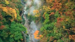 Oyasukyo Gorge in autumn Footage