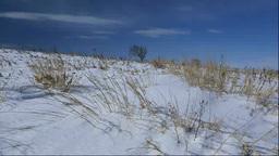 能取岬の雪の草原 Footage