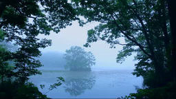 霧の大沼公園 Stock Video Footage