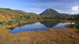 羅臼湖遊歩道沿いの三の沼と羅臼岳 Stock Video Footage