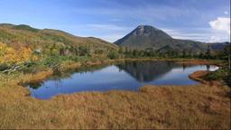 羅臼湖遊歩道沿いの三の沼と羅臼岳 Footage