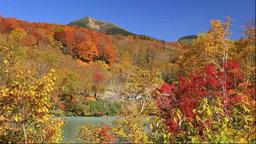 酸ヶ湯の紅葉と八甲田山 Footage