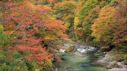 小安峡の皆瀬川と紅葉 Footage