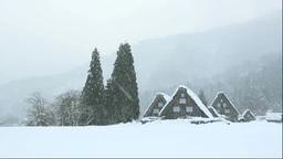 冬の白川郷の降雪と合掌造り Stock Video Footage