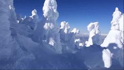 蔵王の樹氷 Footage