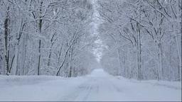 北海道 雪降る道と森 Footage