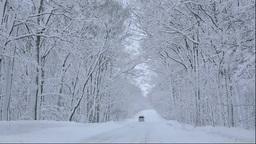 北海道 雪降る道と森と車 Footage