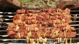 Cooking Shashlik On Fire, Timelapse stock footage