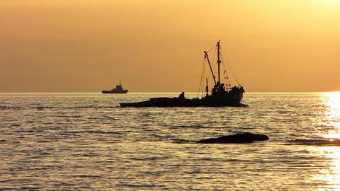 Sea Stock Video Footage