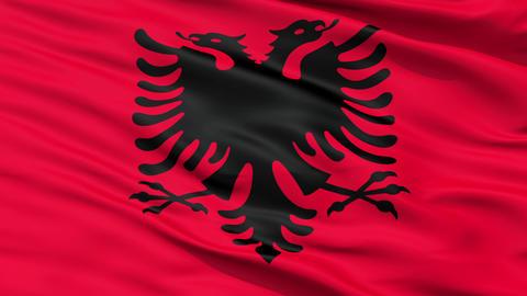 Waving national flag of Albania Animation