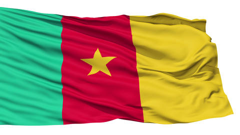 Waving national flag of Cameroon Stock Video Footage
