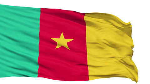 Waving national flag of Cameroon Animation