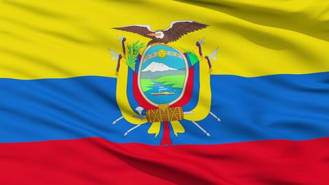 Waving national flag of Ecuador Stock Video Footage