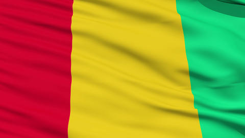 Waving national flag of Guinea Stock Video Footage