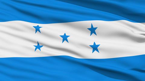Waving national flag of Honduras Stock Video Footage