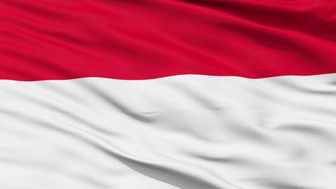Waving national flag of Monaco Stock Video Footage