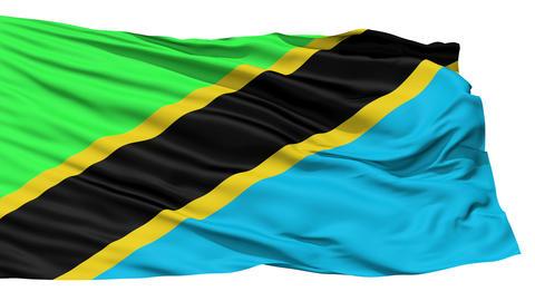 Waving national flag of Tanzania Stock Video Footage