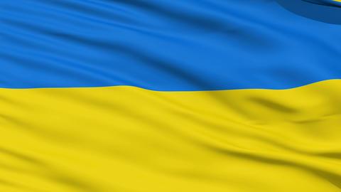 Waving national flag of Ukraine Stock Video Footage