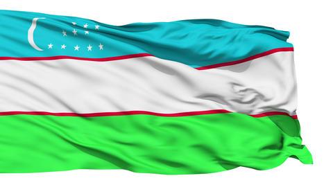 Waving national flag of Uzbekistan Stock Video Footage