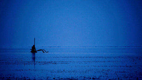 Fishermen at night 3 Stock Video Footage