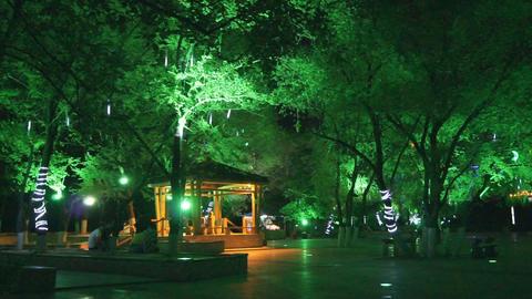 Heihe City Night Park Inside View Stock Video Footage