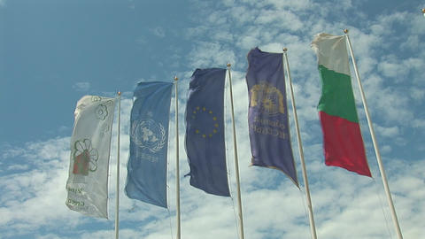 flags 4 Stock Video Footage