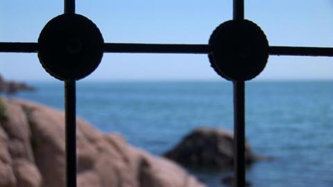 sea grate Stock Video Footage