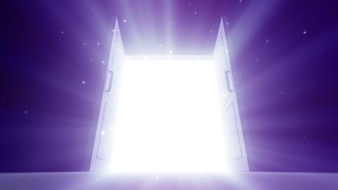 Door Opening DD M1 Fix2 HD Stock Video Footage