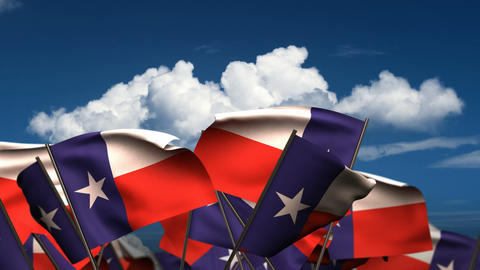 Waving Texas State Flags Animation