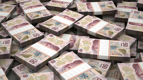 Stack of Mexican Pesos Animation