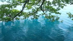 田沢湖の水 Footage