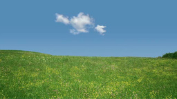Prairie And Clouds stock footage