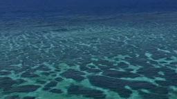 サンゴ礁の海 パーン Footage