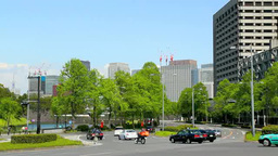 Fresh green on the Marunouchi building group Footage