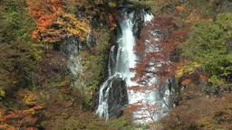 Water falling on Kirifuri waterfall in Nikko, Tochigi, Japan Footage