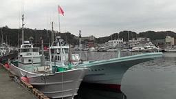 Fishing boats mooring at harbor in Japan Footage