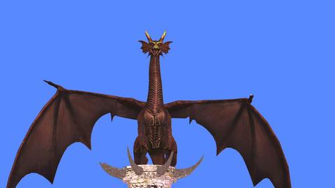 ドラゴン Animation