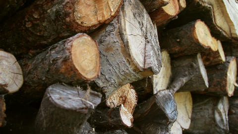firewood Stock Video Footage