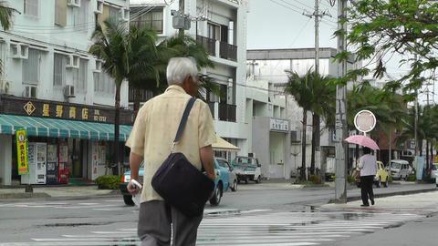 Ishigaki Okinawa Islands 06 Stock Video Footage